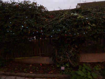 Maplin exterior/interior fairy lights